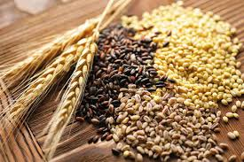 Ciclo de charlas saludables sobre el consumo de cereales | Noticias |  Buenos Aires Ciudad - Gobierno de la Ciudad Autónoma de Buenos Aires